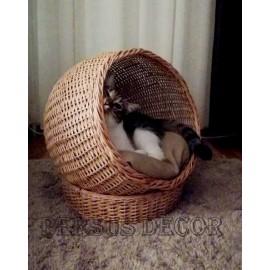 Cos pisica semisfera